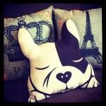 almofada-bulldog